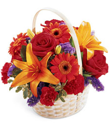 Freshness Bouquet