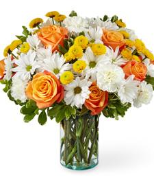 Daisy Sweet Bouquet