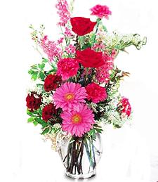 Heartwarming Blooms