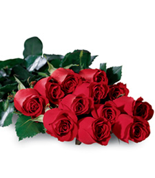 One Dozen Boxed Birthday Roses