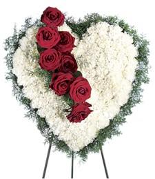 Bleeding Heart Funeral Spray