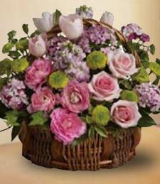 Bella Rose Bouquet