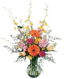 Splendid Get Well Bouquet