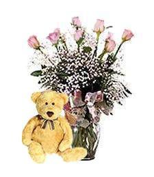 One-Dozen Pink Roses & Teddy Bear