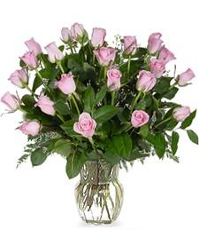 Two-Dozen Pink Roses