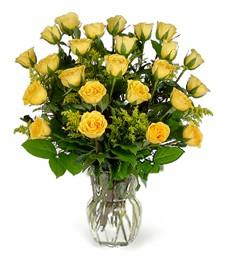 Two-Dozen Yellow Roses