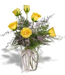 Half-Dozen Yellow Roses