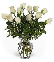 One-Dozen White Roses