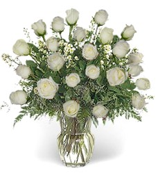 Two-Dozen White Roses