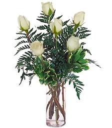 Half-Dozen White Roses