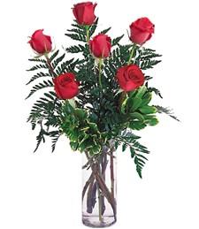 Half-Dozen Red Roses