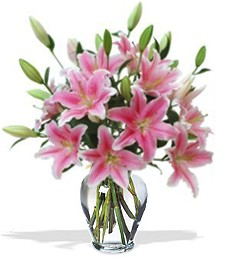 Fragrant Sympathy Pink Lilies