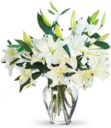 Fragrant White Funeral Lilies
