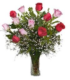 Delightful Dozen Birthday Rose Bouquet