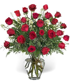 Two-Dozen Red Roses