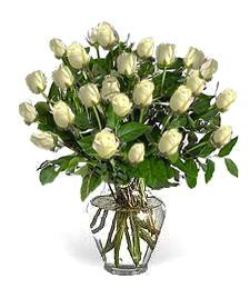 2-Dozen White Roses