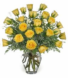 2-Dz Yellow Roses
