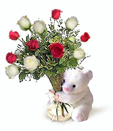 Bear w/ Red & White Roses