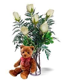 Bear w/ Half-Dozen White Roses