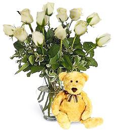 Bear w/ 1-Dz White Roses