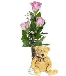 3 Pink Roses & Bear