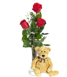 3 Red Roses & Bear