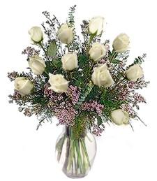 1-Dz White Roses