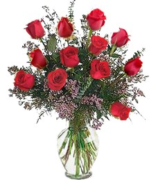 1-Dz Red Roses