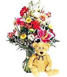 Spring Get Well Flowers & Bear