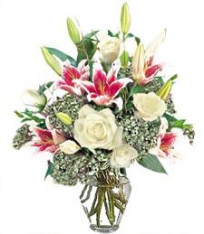Romantic & Fragrant Blooms