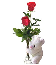 2 Red Roses & Bear