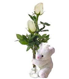 2 White Roses & Bear