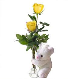 2 Yellow Roses & Bear