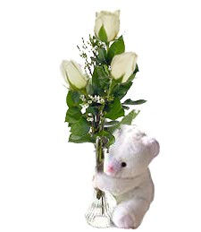 3 White Roses & Bear