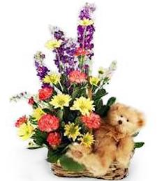 Spring Meadow Get Well Basket & Cuddly Bear